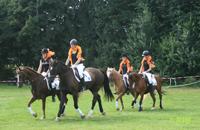 manege, paardrijles, ponykamp